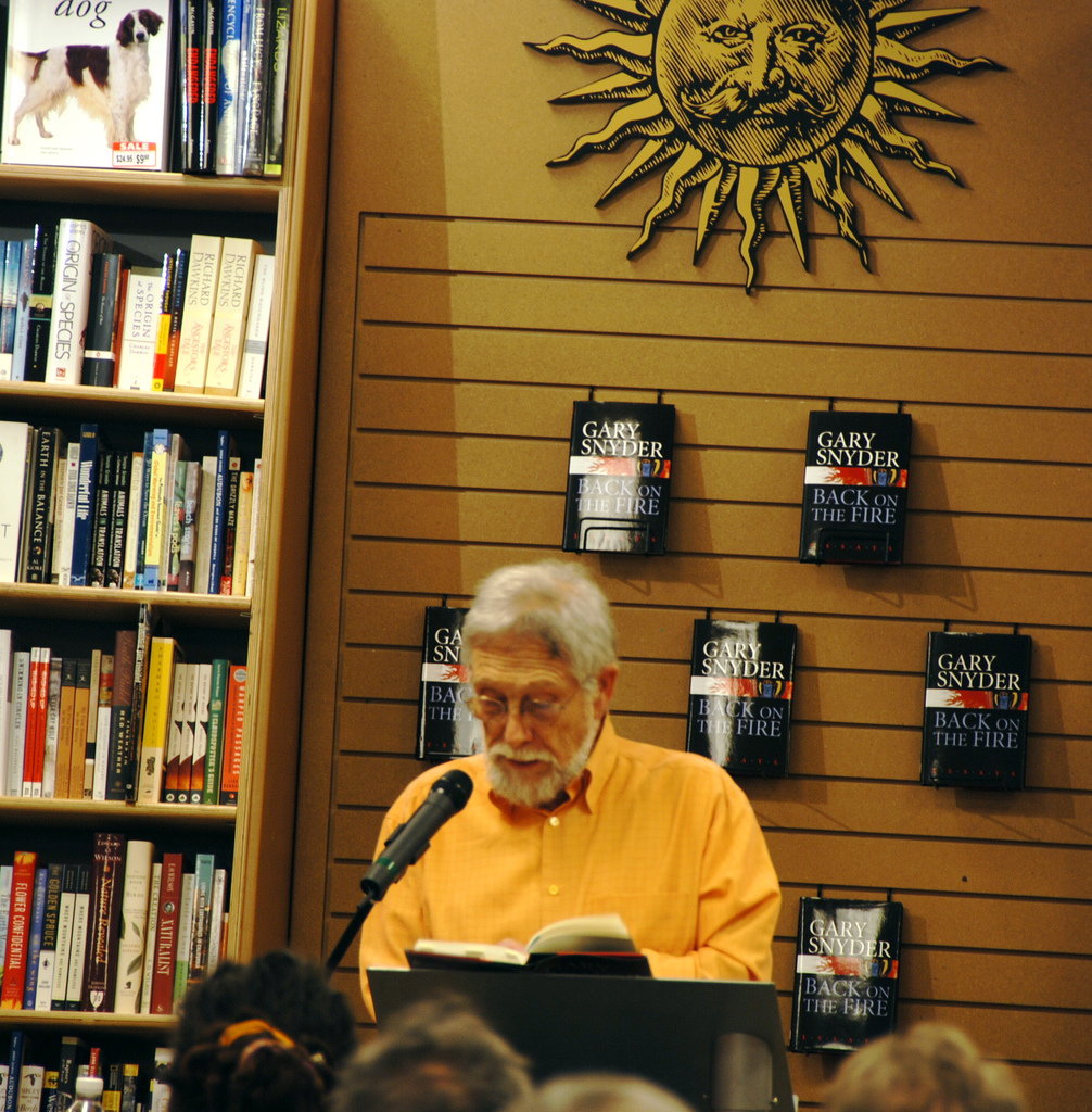 gary snyder back on the fire essays