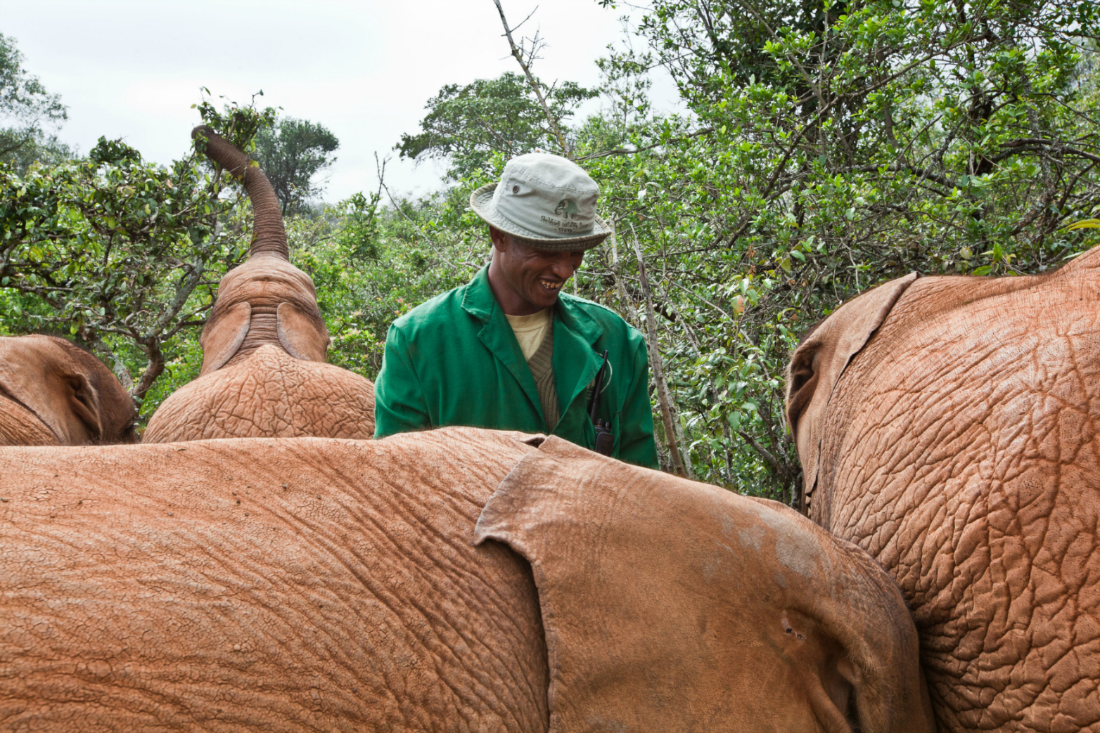 Abdi Kashel, a keeper, with one of the 18 orphaned baby elephants at the David Sheldrick Wildlife Trust in Nairobi National Park. Image:brendanbannon.com