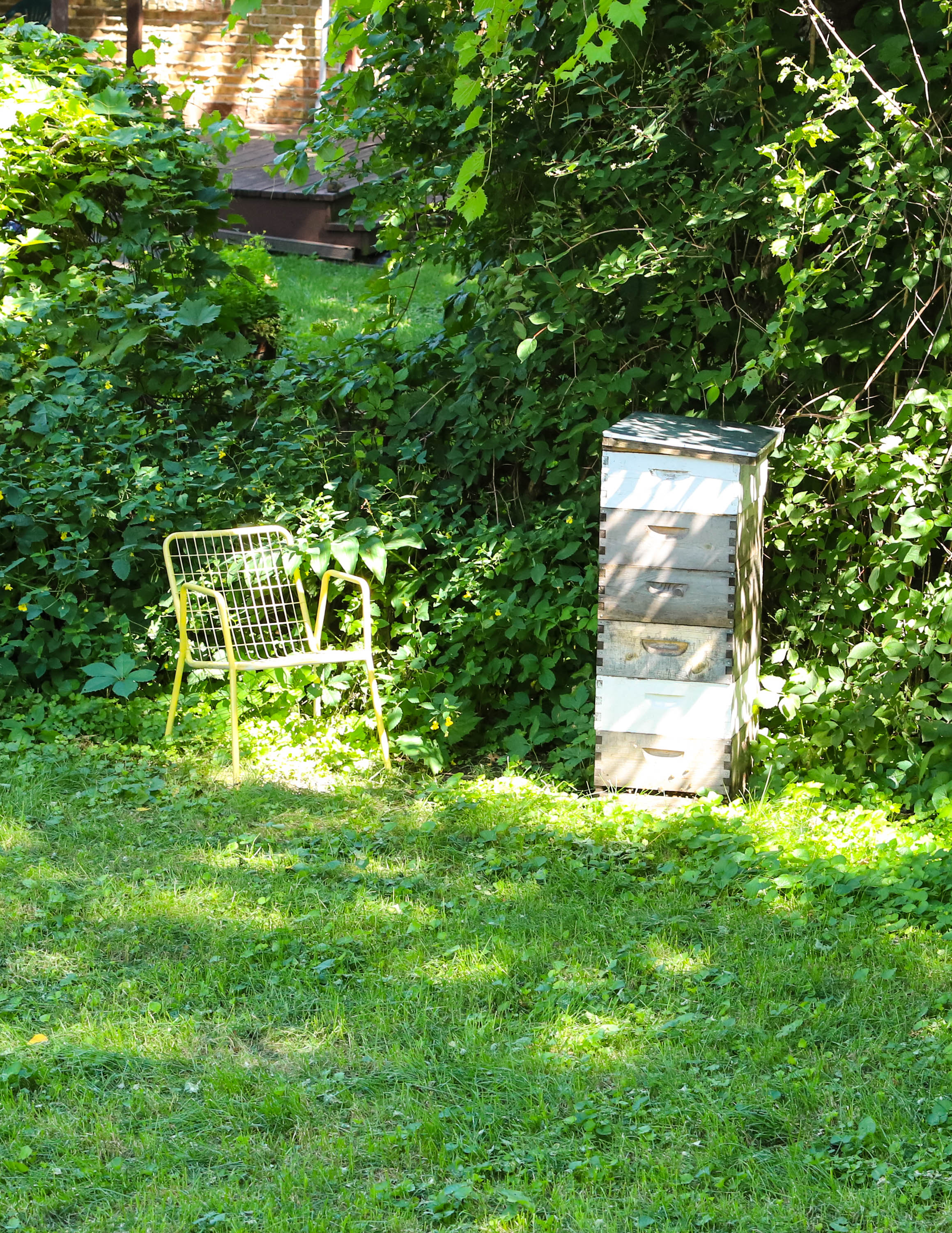 The seat where Heather talks to her bees. <em>Shannon Henry Kleiber (TTBOOK)</em>