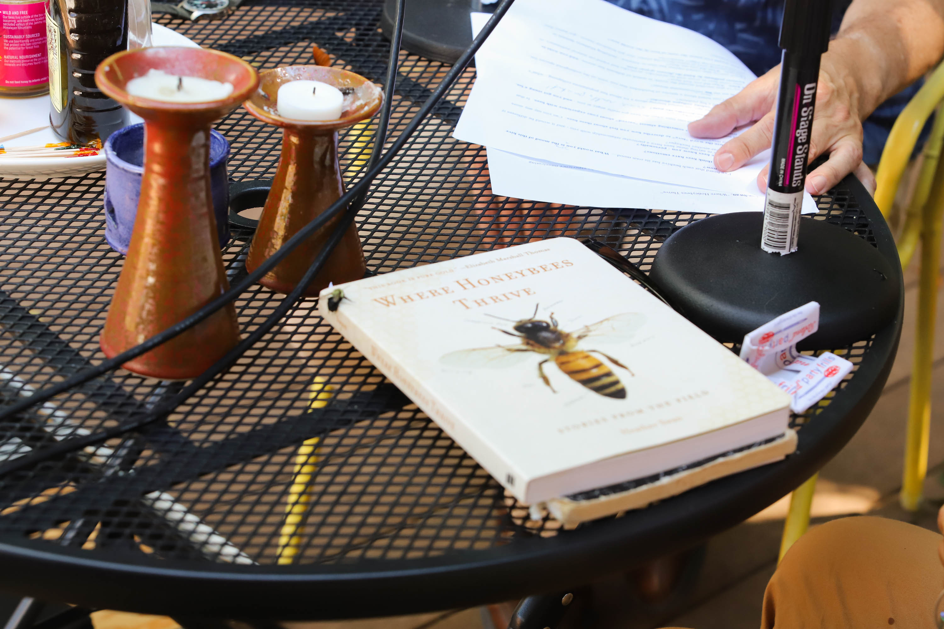Heather, our crew and the bees gather for a honey taste test. A bee stops by to check out Heather's book. <em>Shannon Henry Kleiber (TTBOOK)</em>