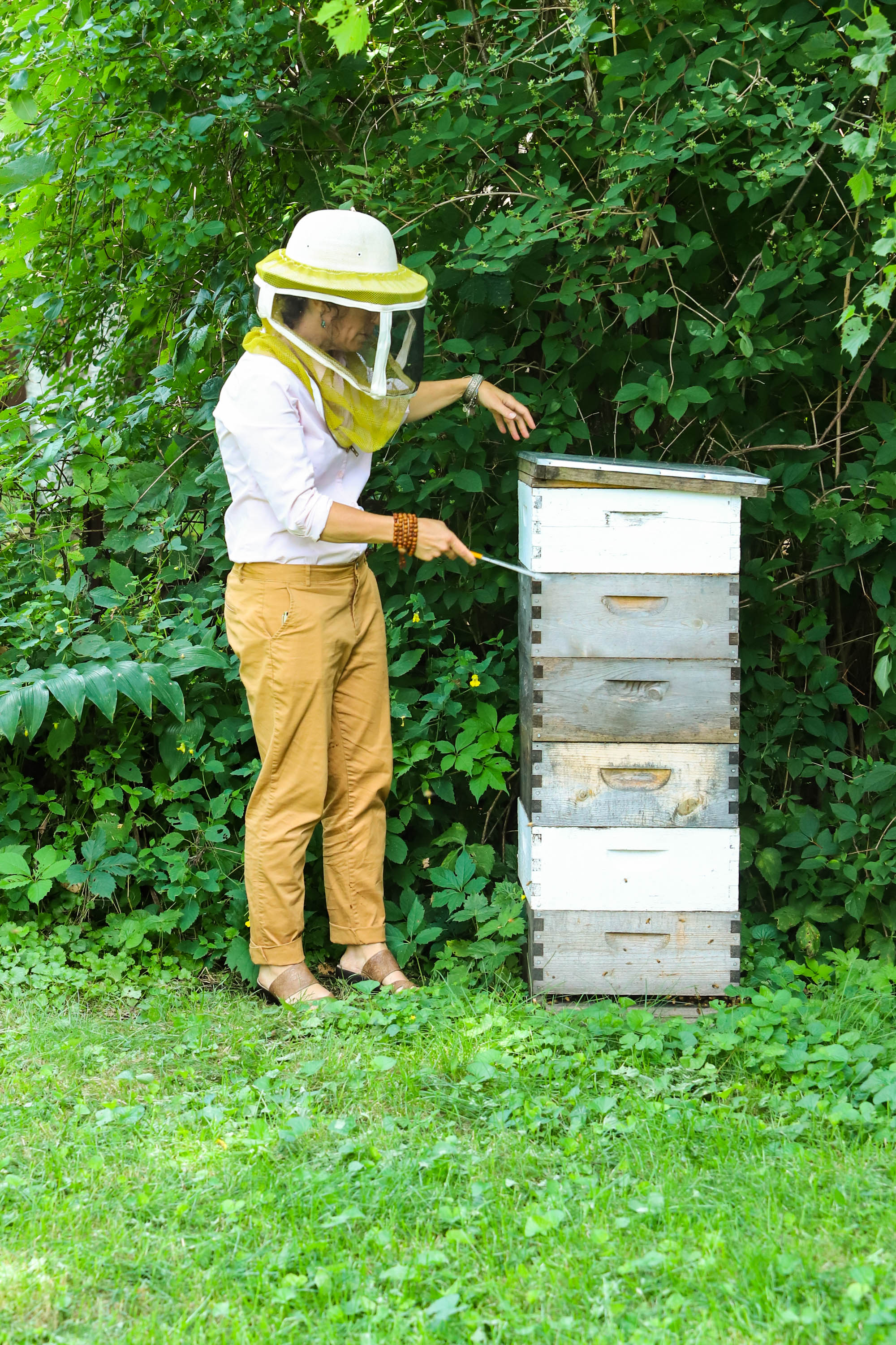 Heather opens the first level of her hive. The hive&nbsp;currently has around 60,000 bees. &nbsp;<em>Shannon Henry Kleiber (TTBOOK)</em>