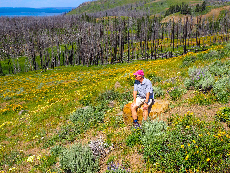 A thoughtful Steve Paulson viewing Yellowstone National Park. <em>Steve Paulson (TTBOOK)</em>