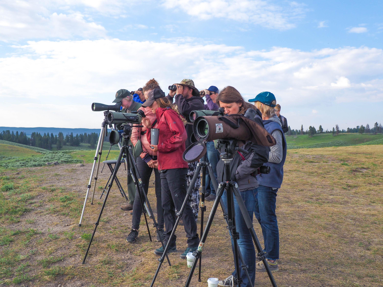 Wolf watchers gather.<em>Steve Paulson (TTBOOK)</em>