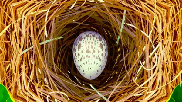 An egg in a nest