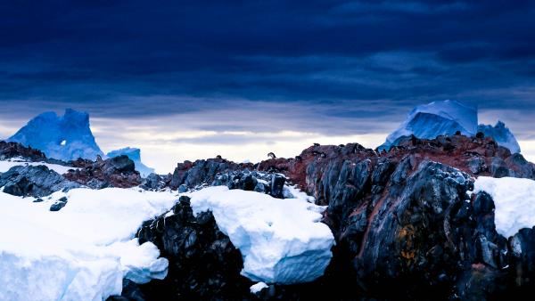 A lonely Antartic landscape.