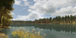 Early fall on the virtual Walden pond.