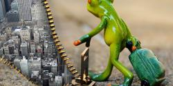 Frog statue unzipping a city