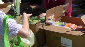 women picks produce at outdoor food pantry