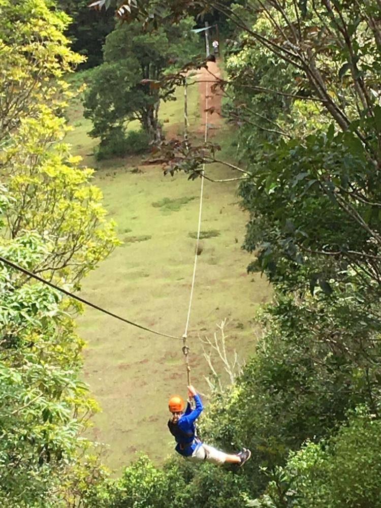 Traveling down O'Reilly's Zip-line course in Lamington National Park - Photo by Allen Rieland