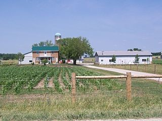 Mennonite Farm, photo by Wikimedia Commons user Jfvoll