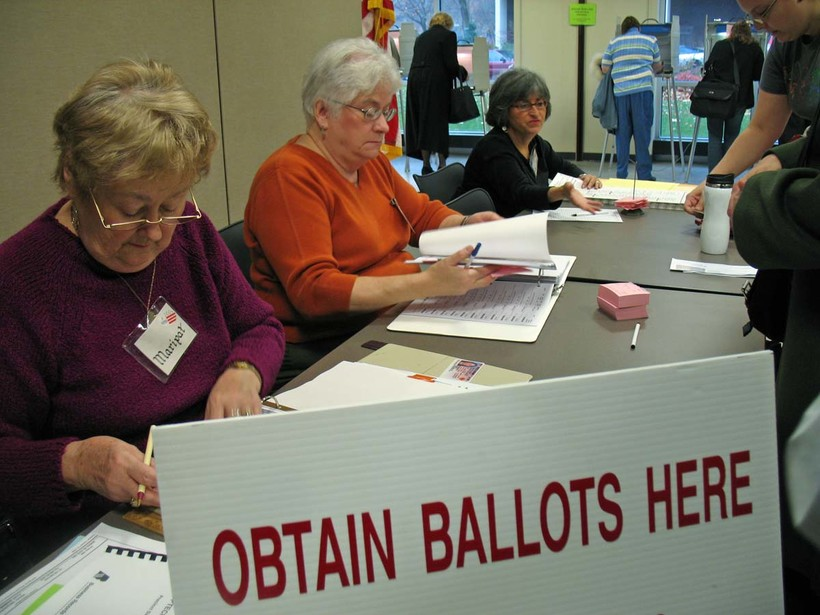Voters at Shorewood Public Library