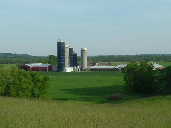 dairy farm in Wisconsin, image by Wikimedia Commons user Donald Caine Jr