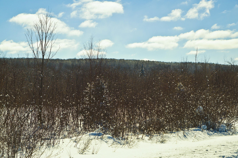 view of the Penokee Hills near the proposed mine site