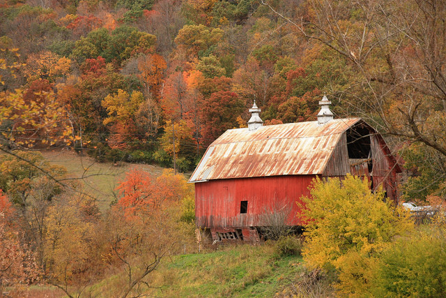 fall barn, photo by Michael Leland