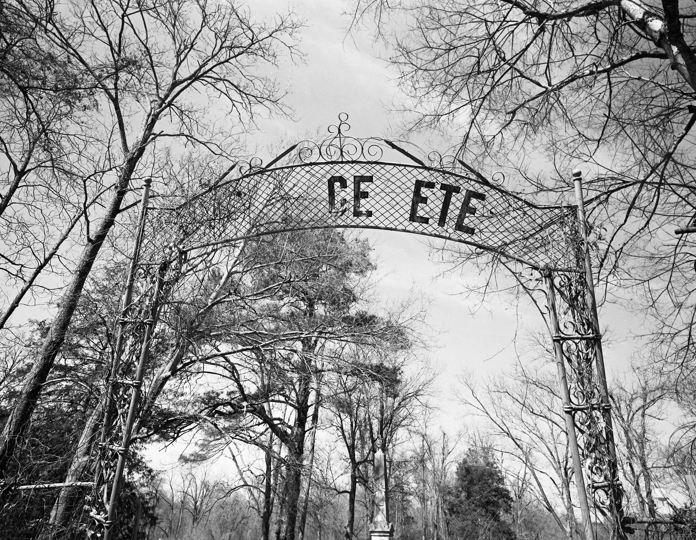 Abandoned cemetery, Vicksburg, 1996