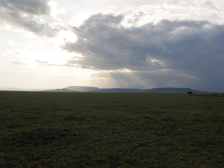 Late afternoon on the Serengeti plain. <em>Steve Paulson (TTBOOK)</em>