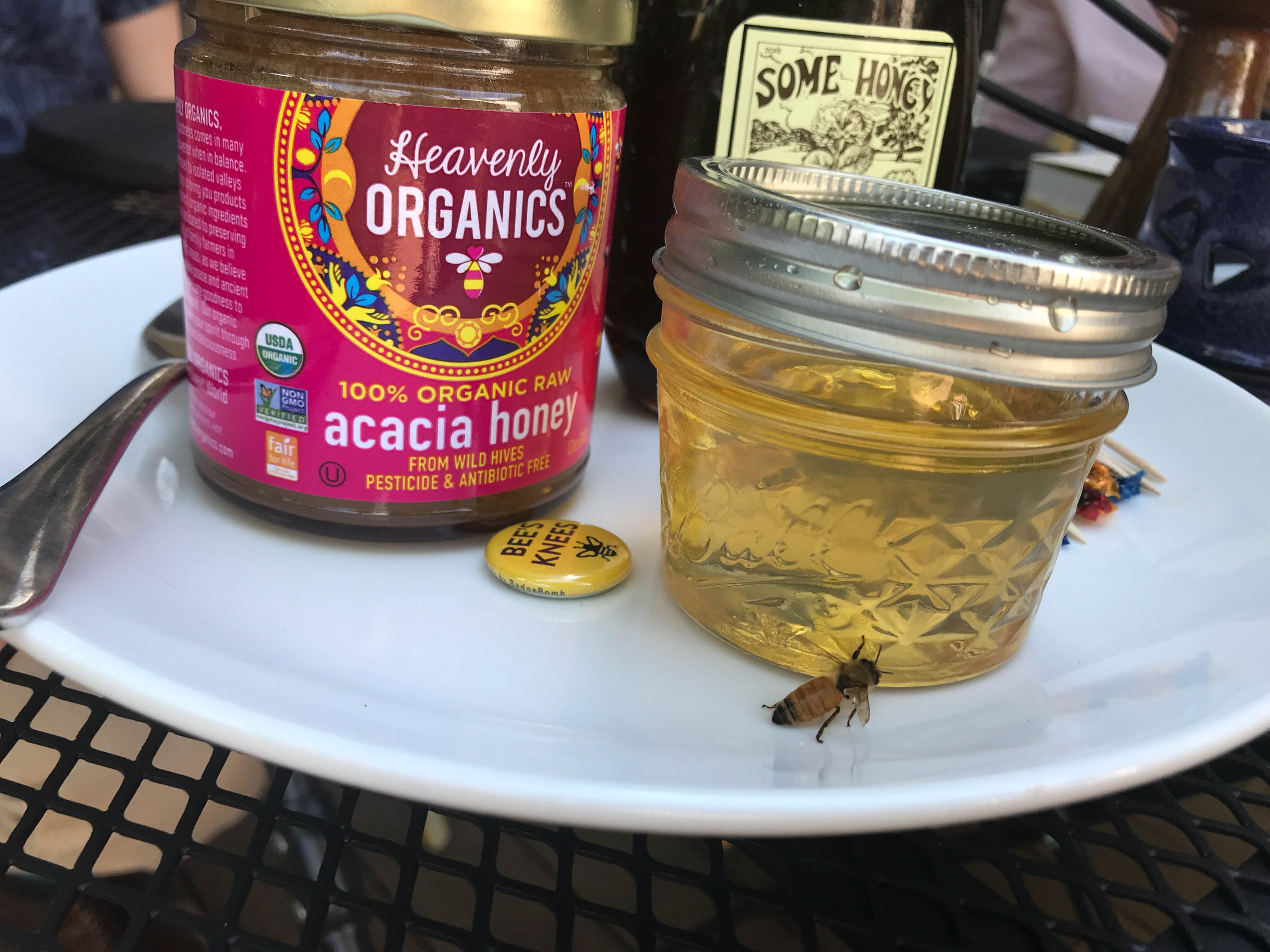 Heather, our crew and the bees gather for a honey taste test. The unlabeled jar came from Heather's hive. <em>Shannon Henry Kleiber (TTBOOK)</em>