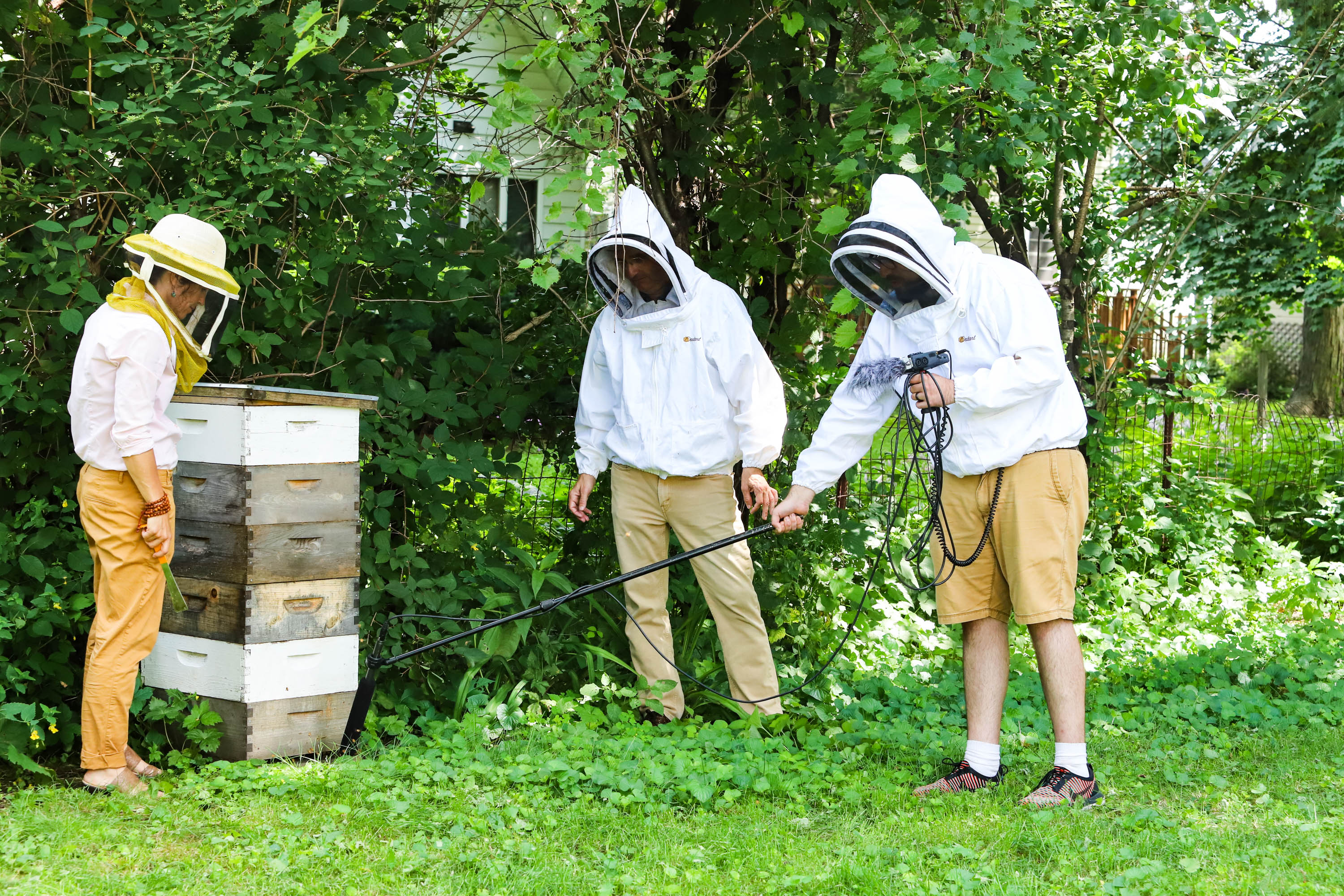 Steve learns about different bee sounds and hive activities while producer Mark Riechers gets in close to hear the bees come in and out.  <em>Shannon Henry Kleiber (TTBOOK)</em>