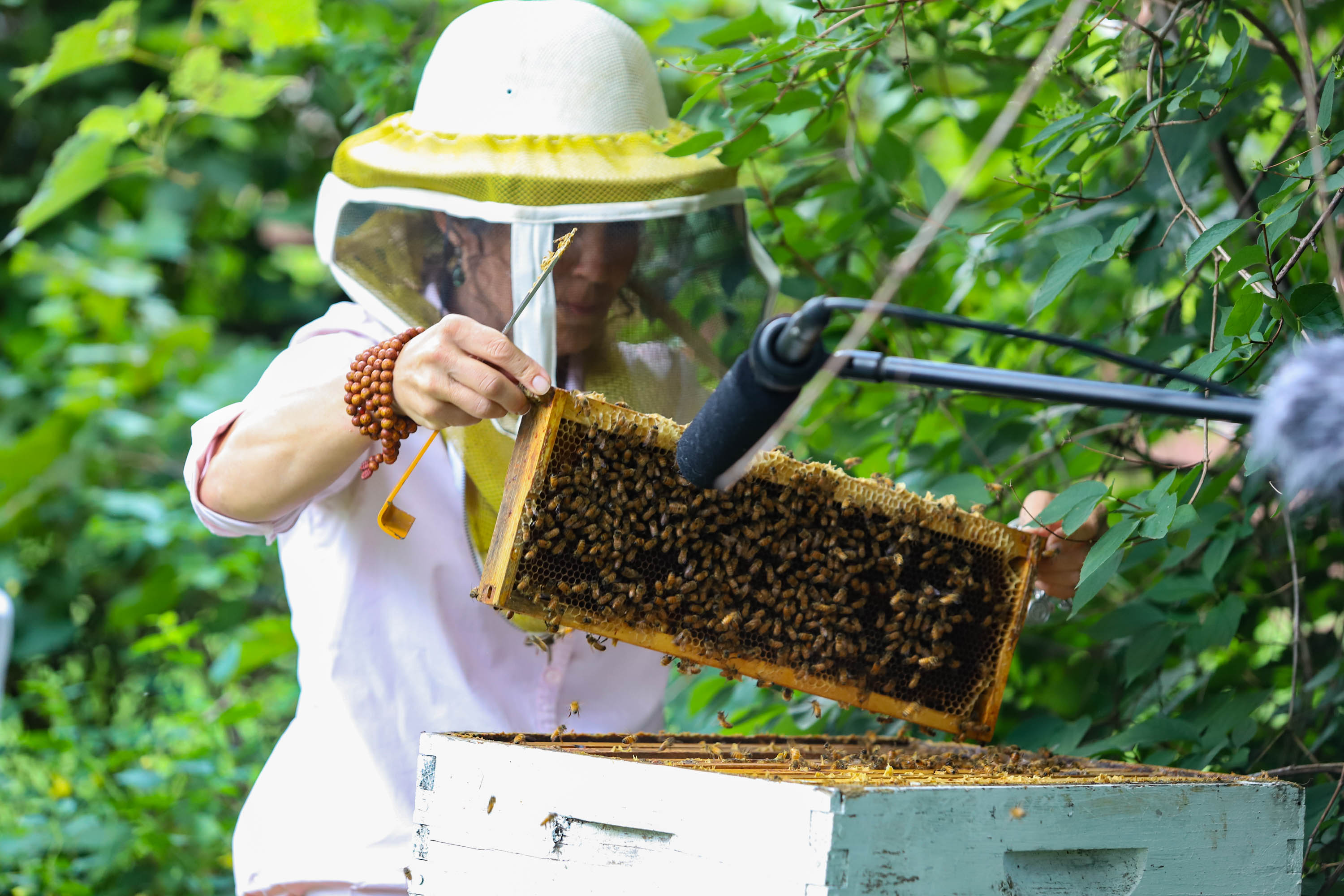 Heather holds up a single frame of the hive. While she could harvest more, she only takes the honey from 4-5 frames at a time, leaving the rest for the bees. That works out to around 25 pounds of honey. <em>Shannon Henry Kleiber (TTBOOK)</em>