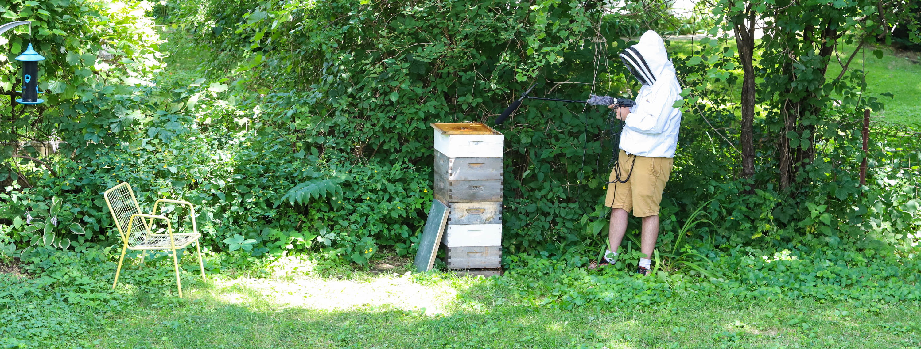 Producer Mark Riechers records some extra bee ambience. Shorts were ill-advised but he never got stung. <em>Shannon Henry Kleiber (TTBOOK)</em>