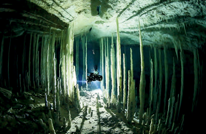 """My favorite cave on Earth is Dan's Cave on Abaco Island, Bahamas. I captured my cave diving brother Dr. Kenny Broad exploring this stunning crystal palace."" <em>(Jill Heinerth)</em>"