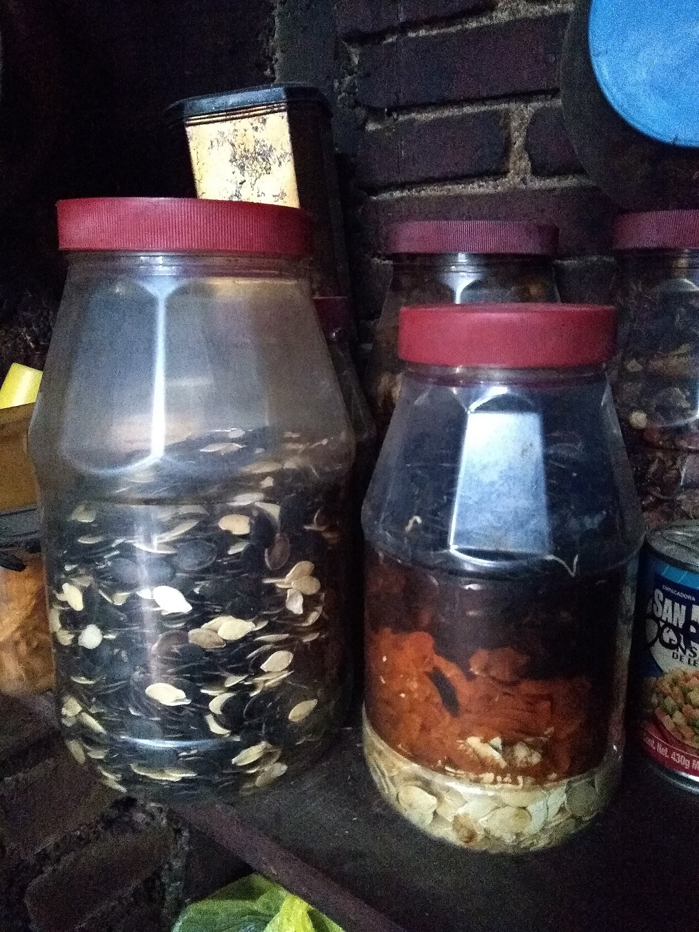 These are seeds that were stored inside the home of Nadia, the woman who Seth went planting with at the end of the piece. <em>Seth Jovaag(TTBOOK)</em>