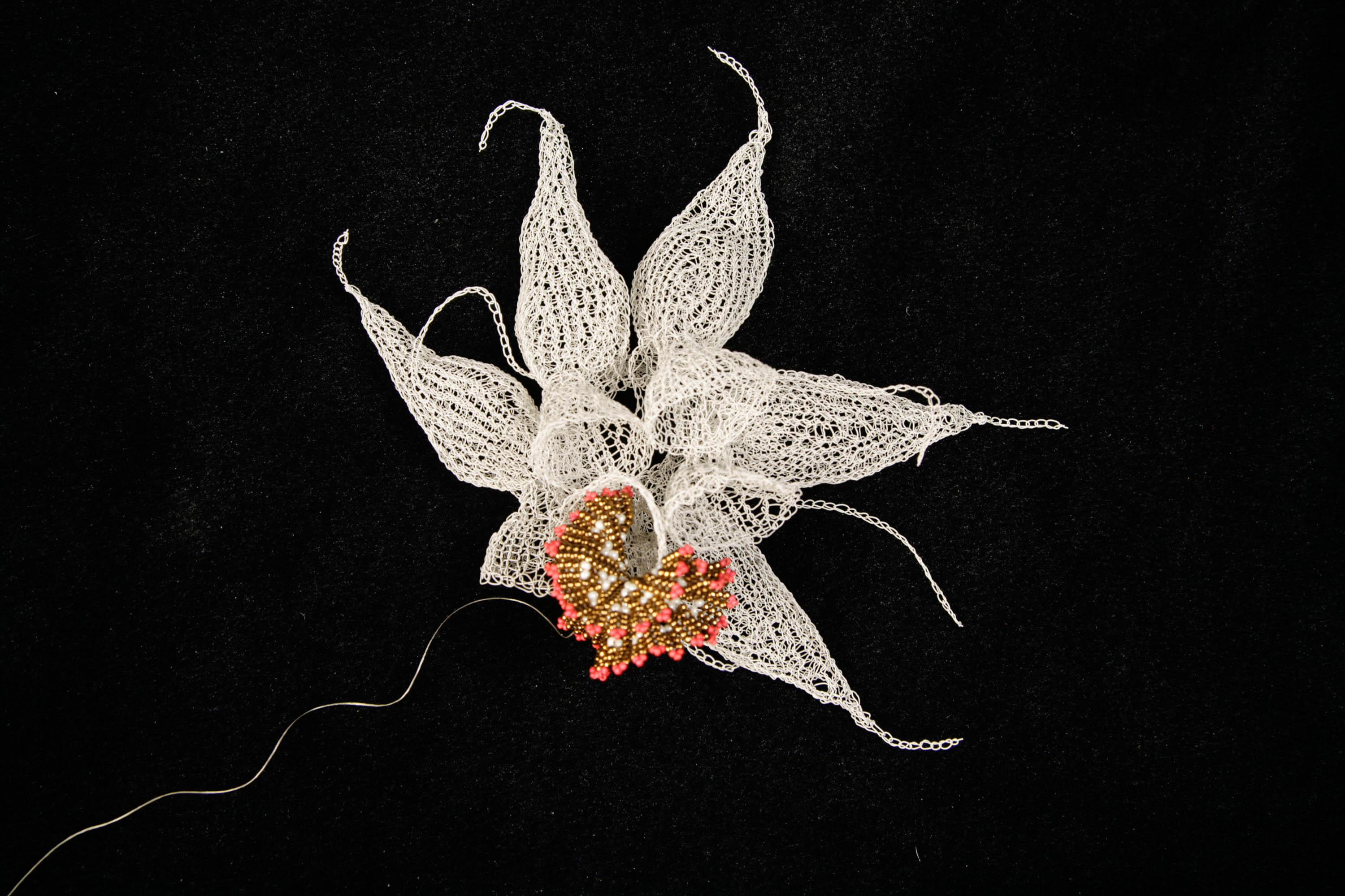 "Knitted wire sea creature (by Anita Bruce) with beaded coral (by Rebecca Peapples) from the ""Crochet Coral Reef"" project by Christine and Margaret Wertheim and the Institute For Figuring. """