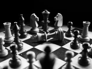 chess fight