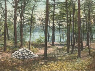 Site of Thoreau's Hut, Concord, Mass.