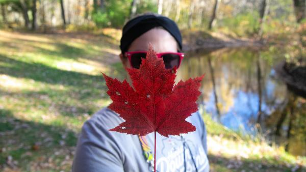 Picking up leaves on a leisurely hike.