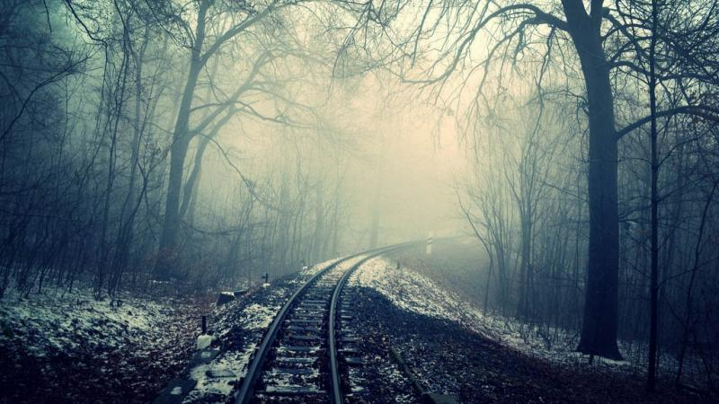 Spooky train tracks in the woods