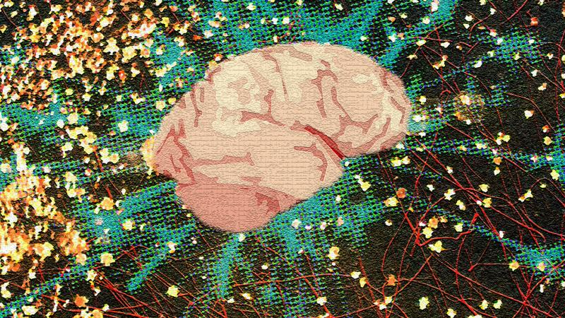 The flurry of creative forces around the brain.