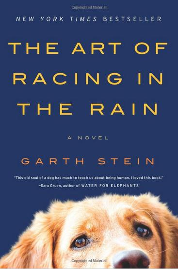 Bookcover for The Art of Racing in the Rain by Garth Stein