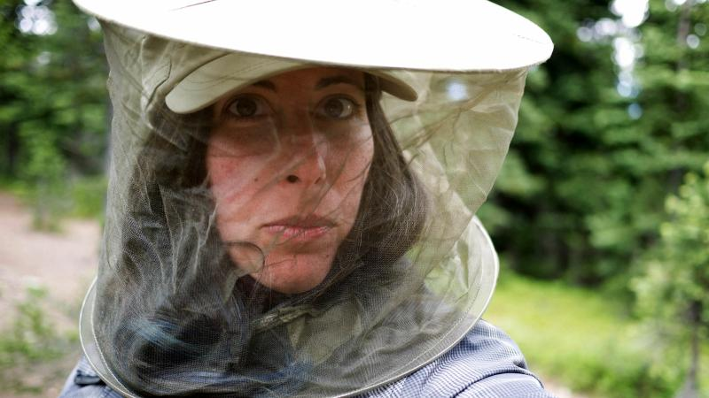 woman with insect netting around head