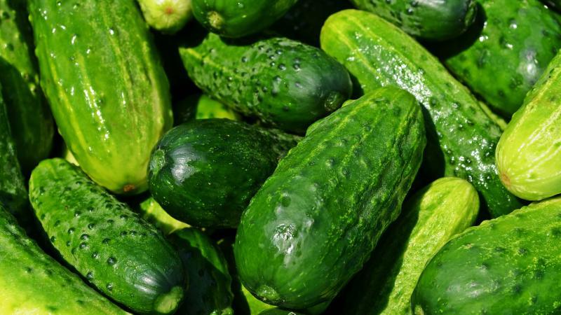 Cucucumbers