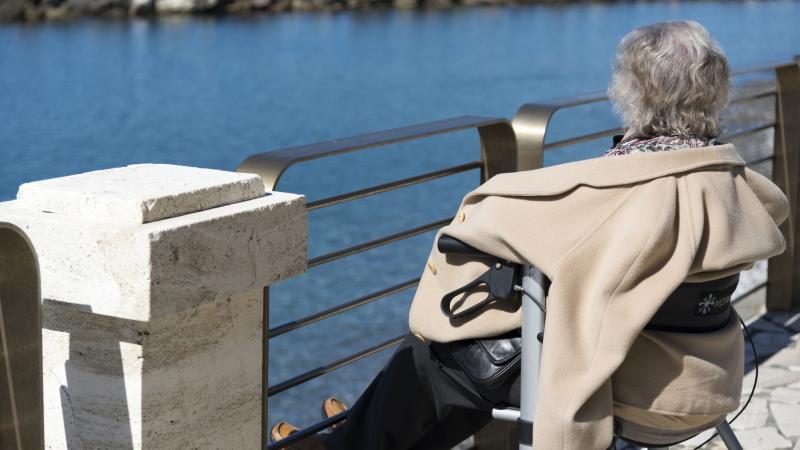 Woman, wheelchair