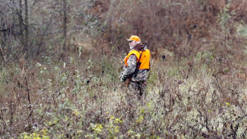 Hunter in woods during hunting season