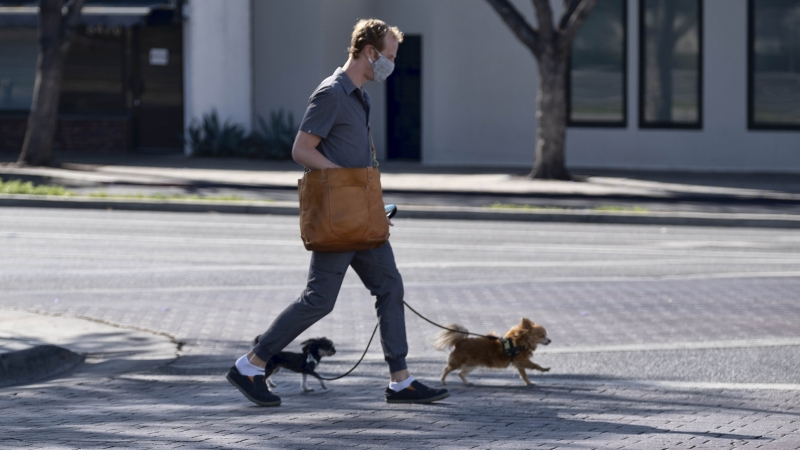 A man wearing a protective mask crosses a street with his dogs in West Hollywood