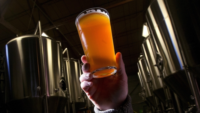 Hand holding a pint of beer in the middle of beer making tanks