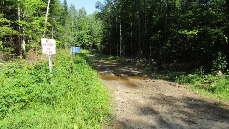 Logging road in Oneida County at the end of Hildebrand Lake Drive