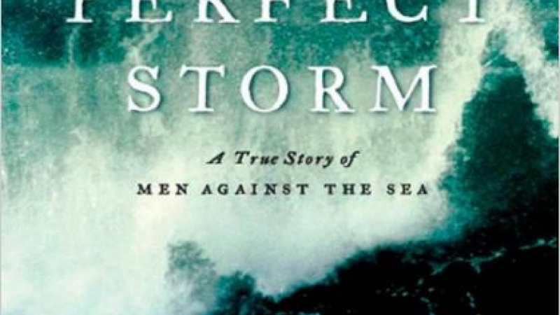 Cover photo of The Perfect Storm