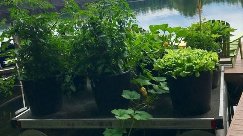 Raft container garden in northern Wisconsin