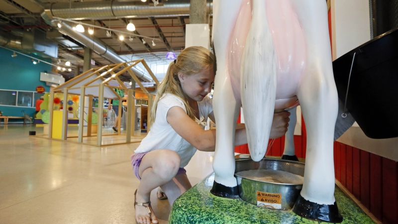 A child interacts with a dairy farm exhibit at a children's museum