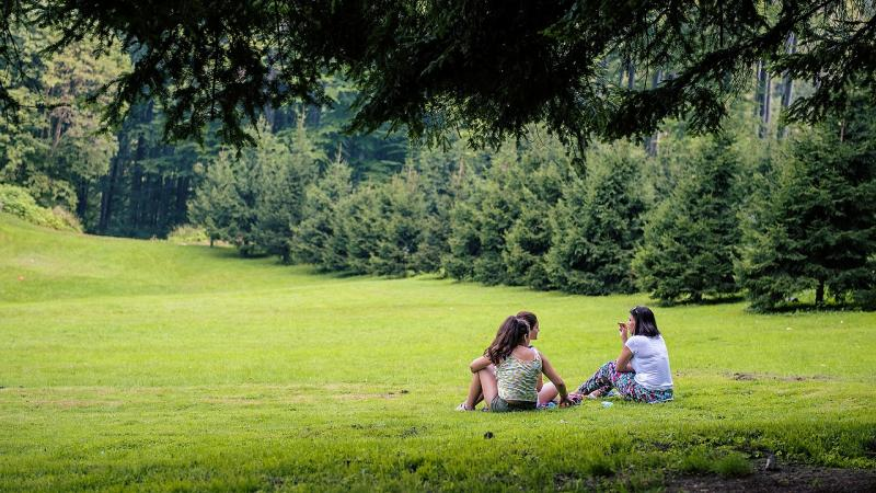 teenage girls having a picnic in field