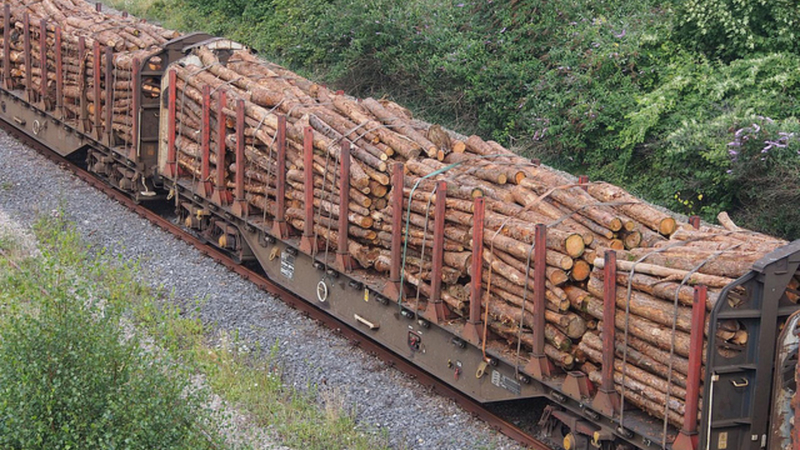 timber being hauled by train