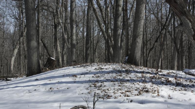 Effigy mound