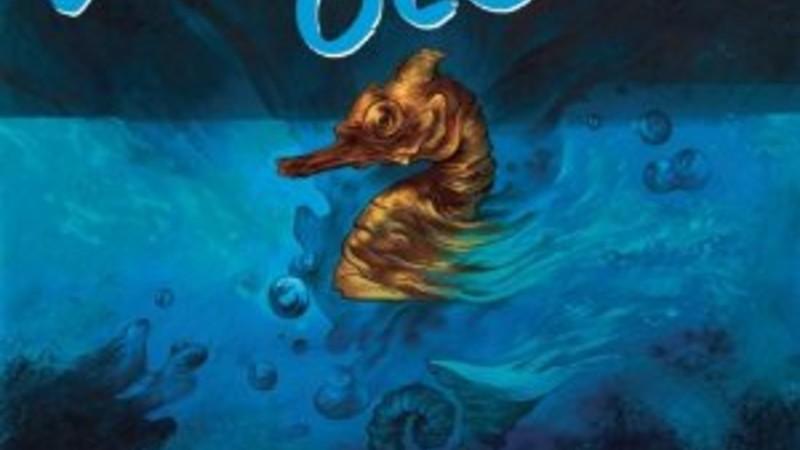 Wild Ocean book cover