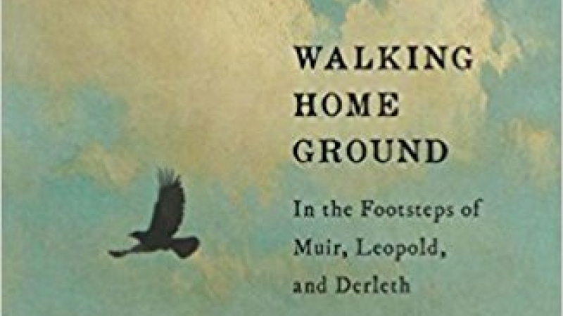 Book cover for Walking Home Ground by Robert Root