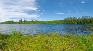 Nell Lake