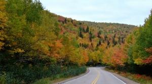 Road through a fall countryside